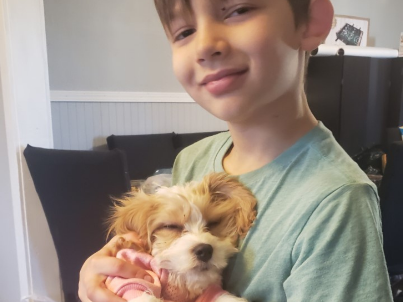 Jacobs dream of puppy comes true