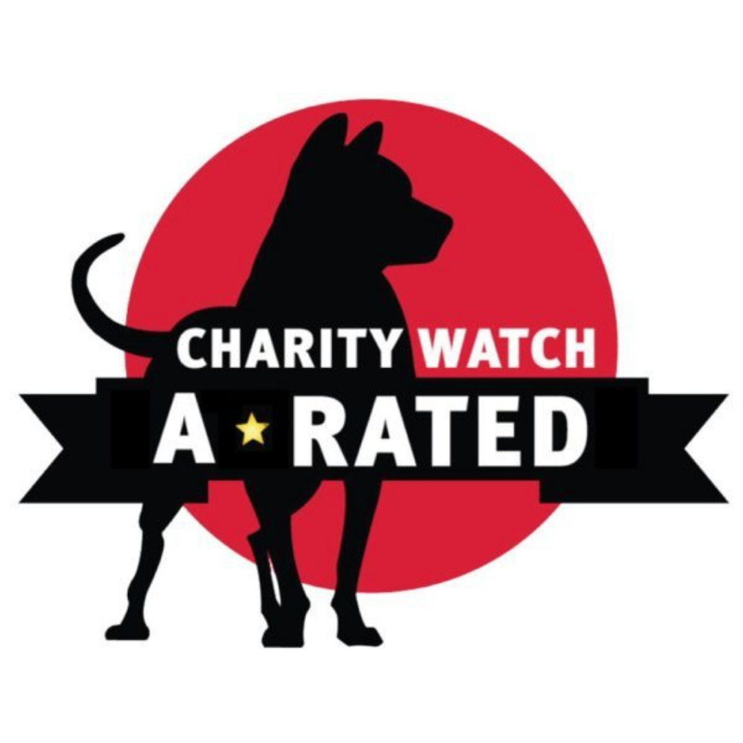 Sunshine Foundation earns A rating from CharityWatch